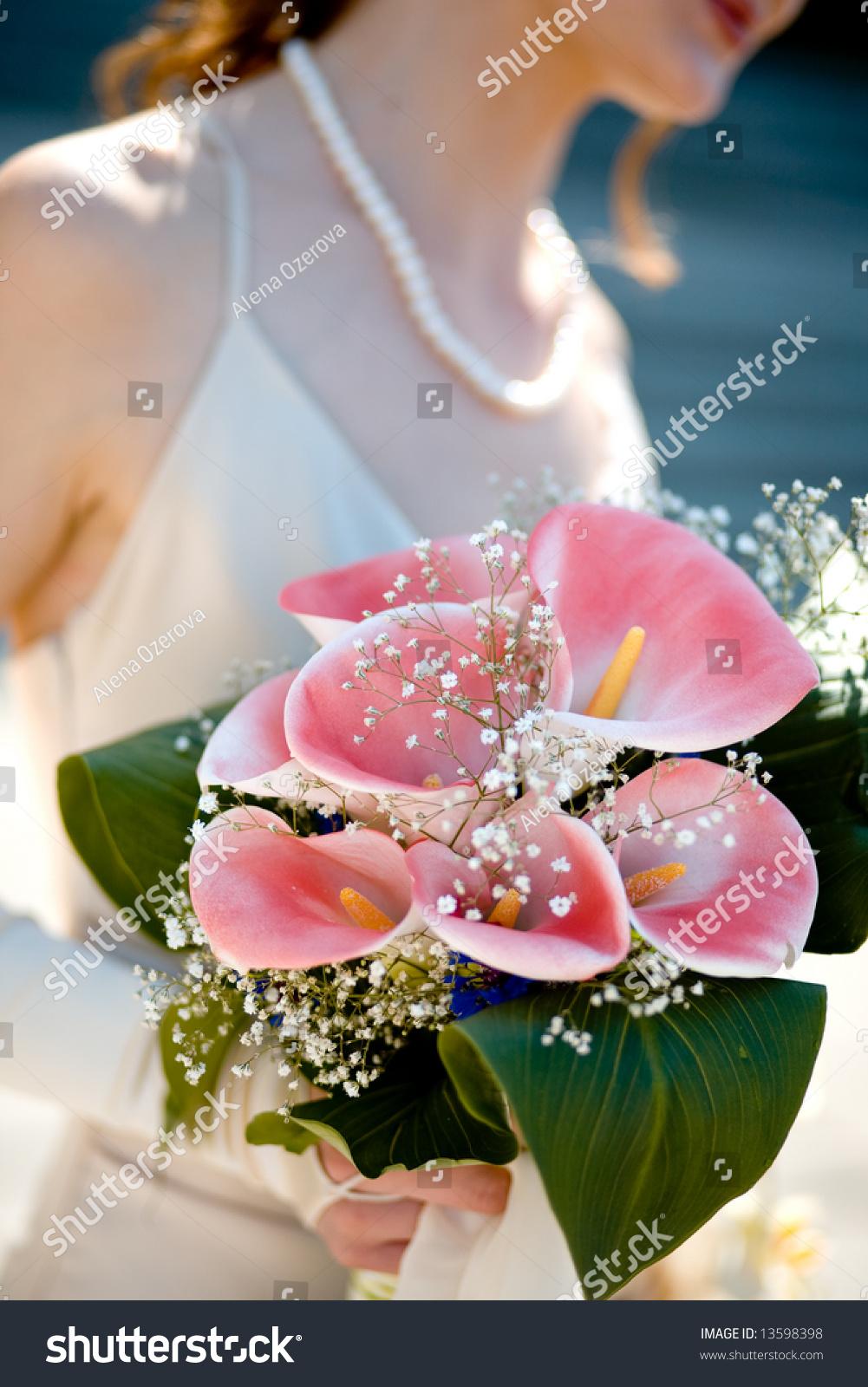 Wedding Bouquet Pink Calla Lilies Brides Stock Photo (Royalty Free ...