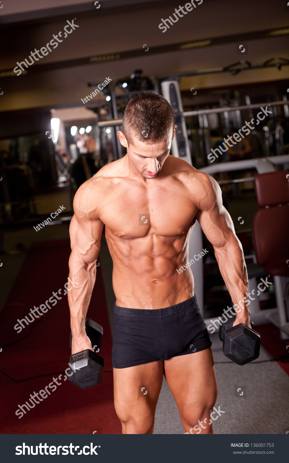 Bodybuilder Training Gym Stock Photo 136001753 - Shutterstock
