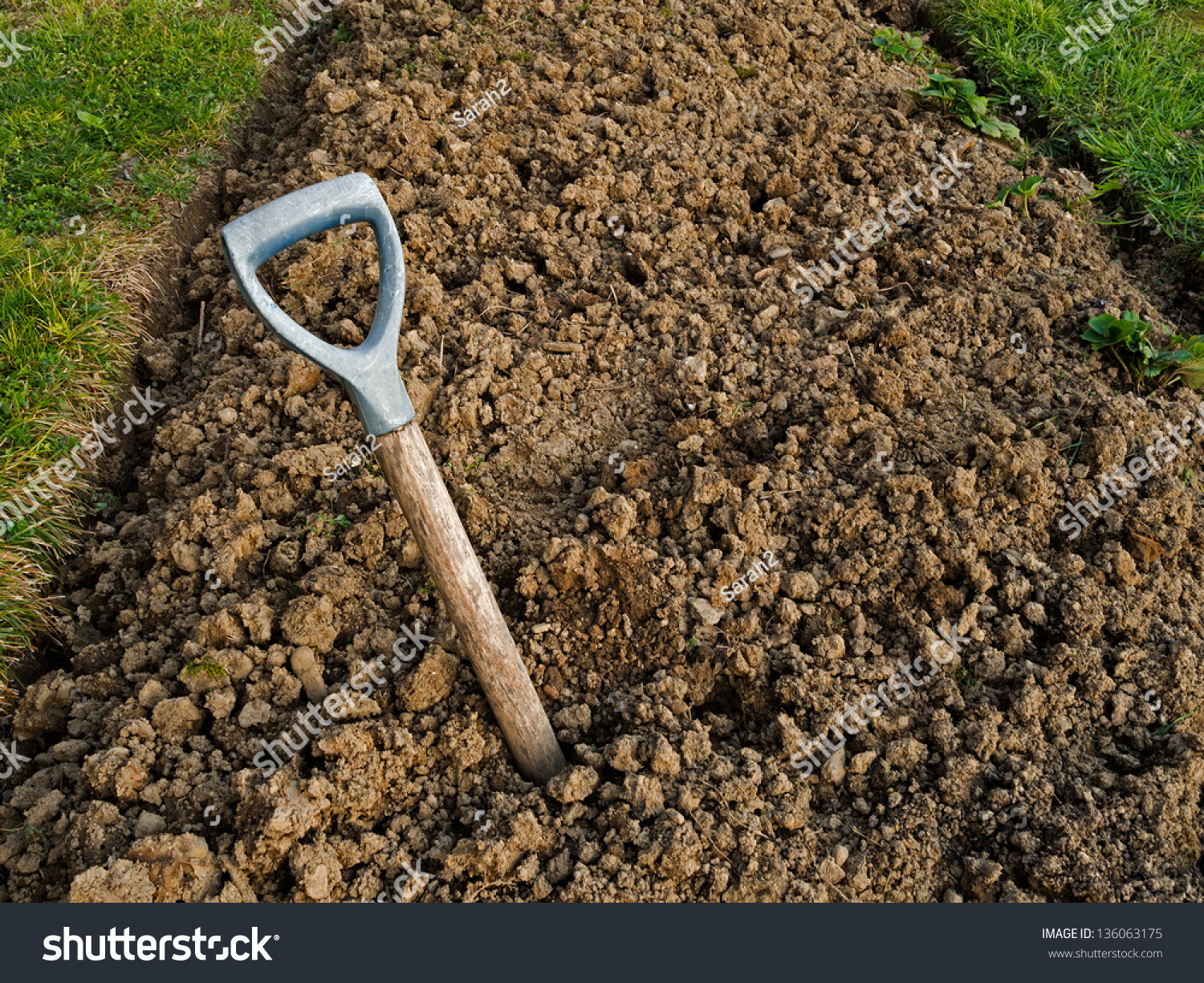 Heavy clay soil with buried broken garden fork gardening for Soil in english