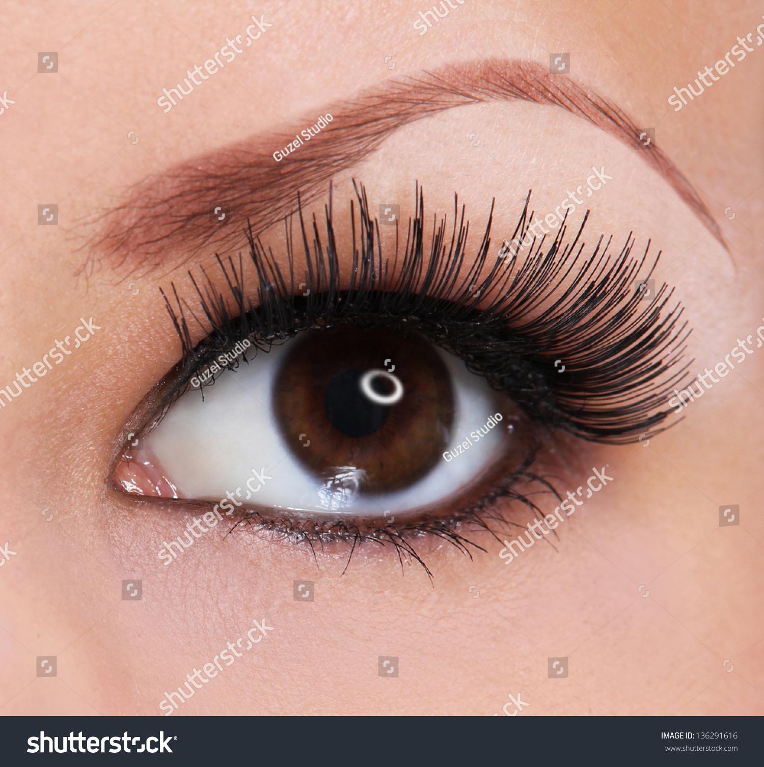 Eye Long Eyelashes Beautiful Woman Brown Stock Photo 136291616 ...