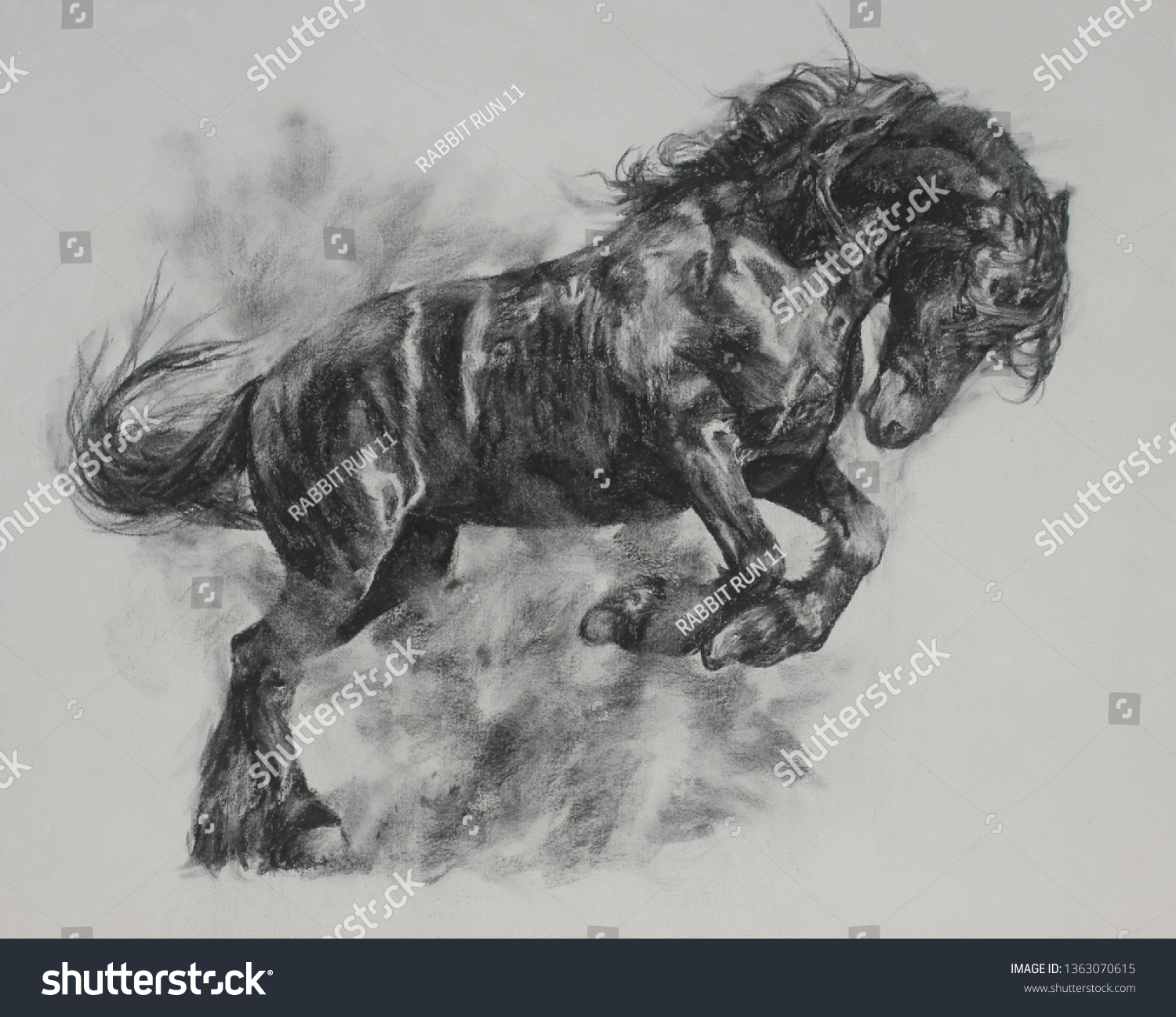Charcoal Painting Horse On Canvas Draw Stock Illustration 1363070615