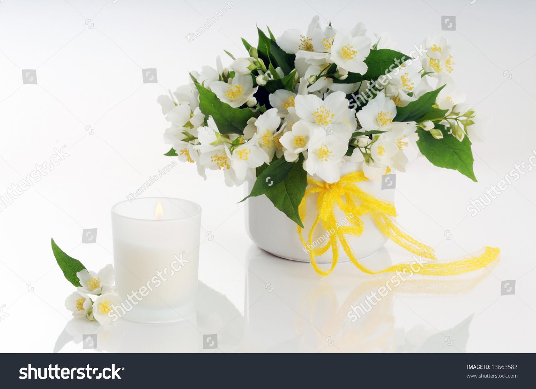 Jasmine flowers arrangement stock photo edit now 13663582 jasmine flowers arrangement izmirmasajfo