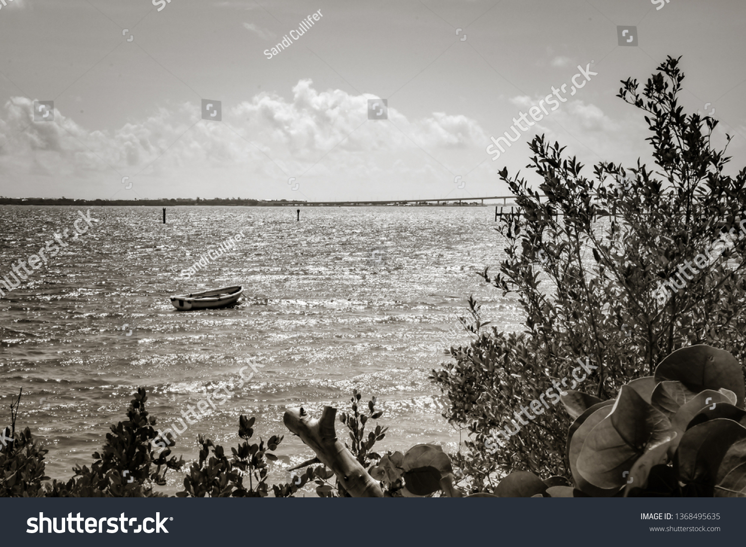 Artsy black and white view of a small boat anchored in a florida river with a
