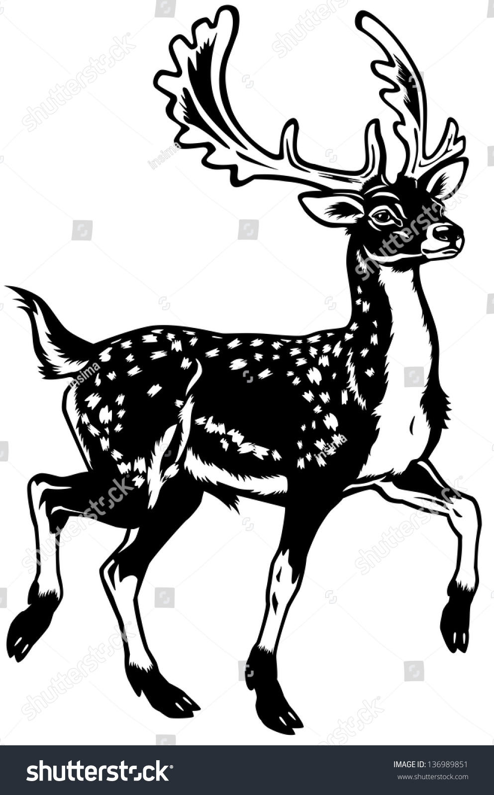 Deer illustration black and white - photo#18