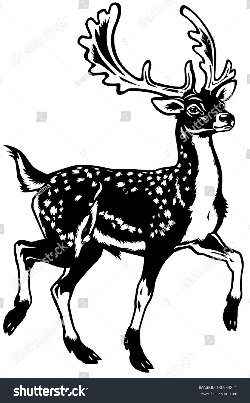 Deer illustration black and white - photo#18