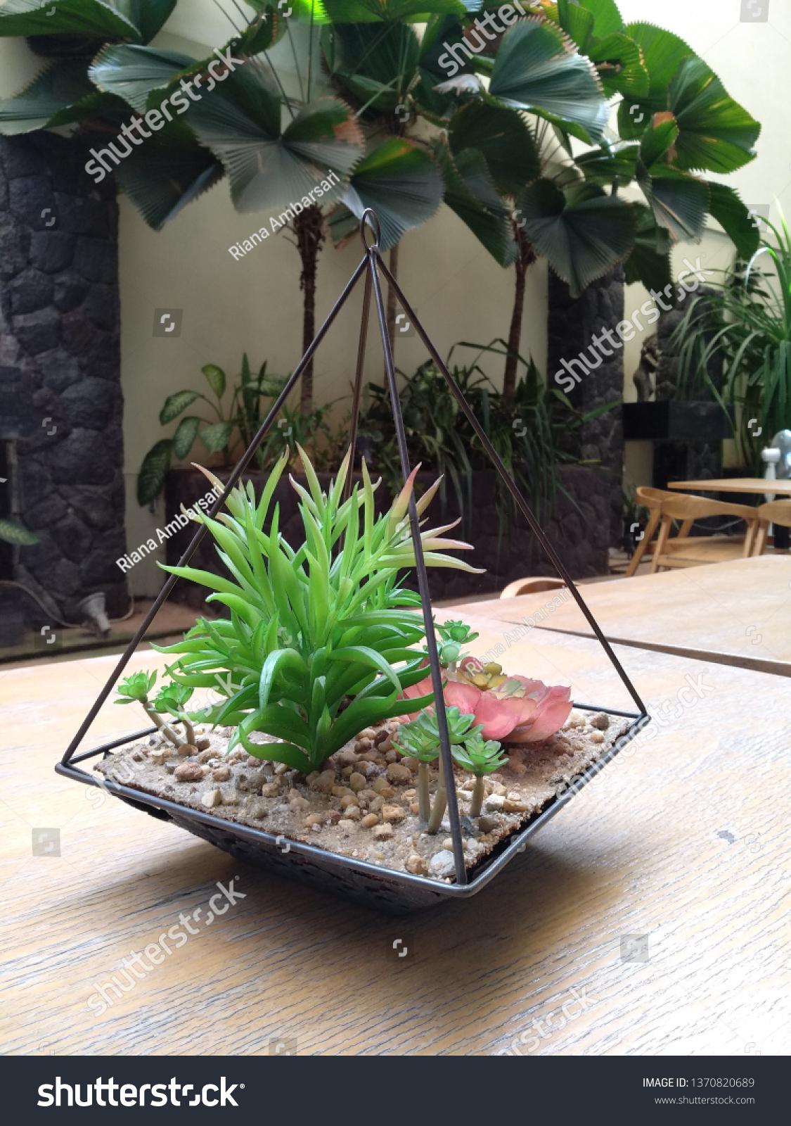 Succulent Terrarium On Wooden Table Garden Stock Photo Edit Now 1370820689