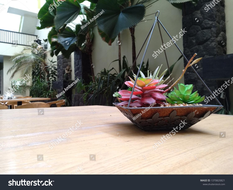 Succulent Terrarium On Wooden Table Garden Stock Photo Edit Now 1370820821