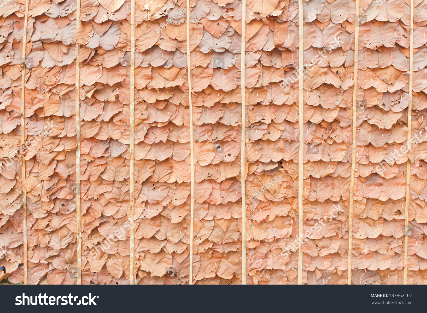 Thatched Roof Fence Tree Phluang Leaves Stock Photo