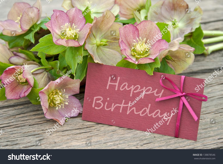 Pink Flowers Birthday Cardbirthday Card Christmas Rose Stock Photo