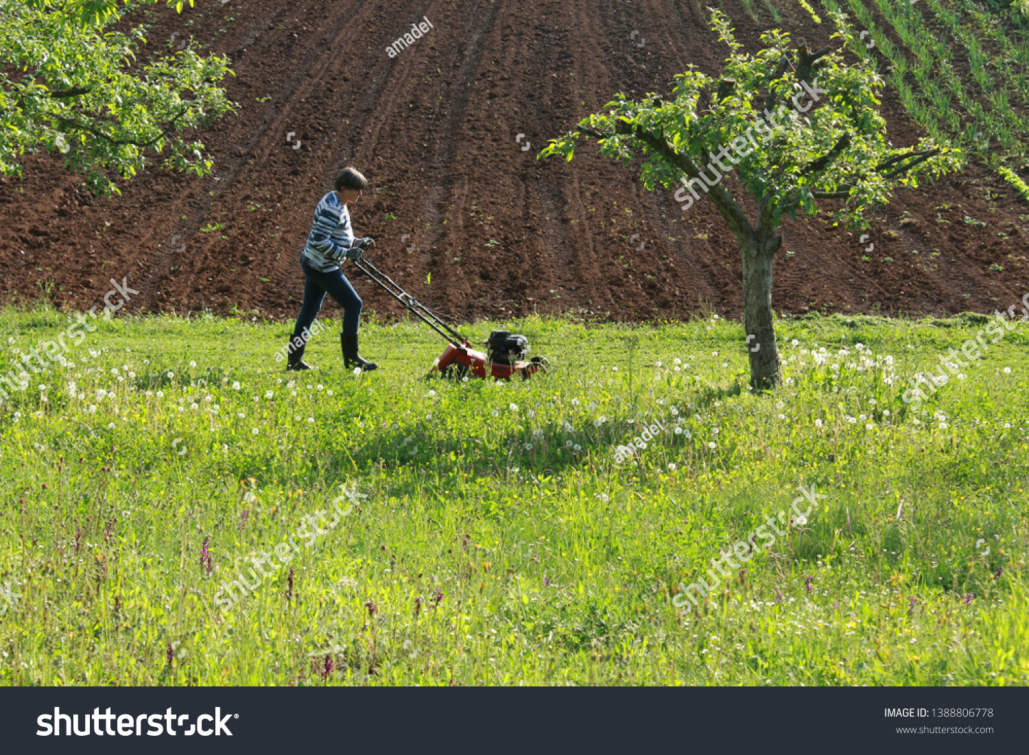 """""""Slunj / Croatia - May 1st 2019: Labor day in Croatia, housewife mowing the lawn in back yard. On this day, people in some places of Croatia are usually doing works around the house."""