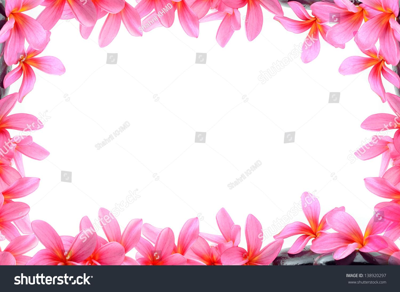 beautiful frangipani flowers border design stock photo