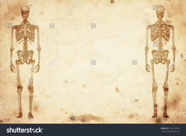 Cursory Drawing Human Skeleton On Old Stock Illustration 139110605