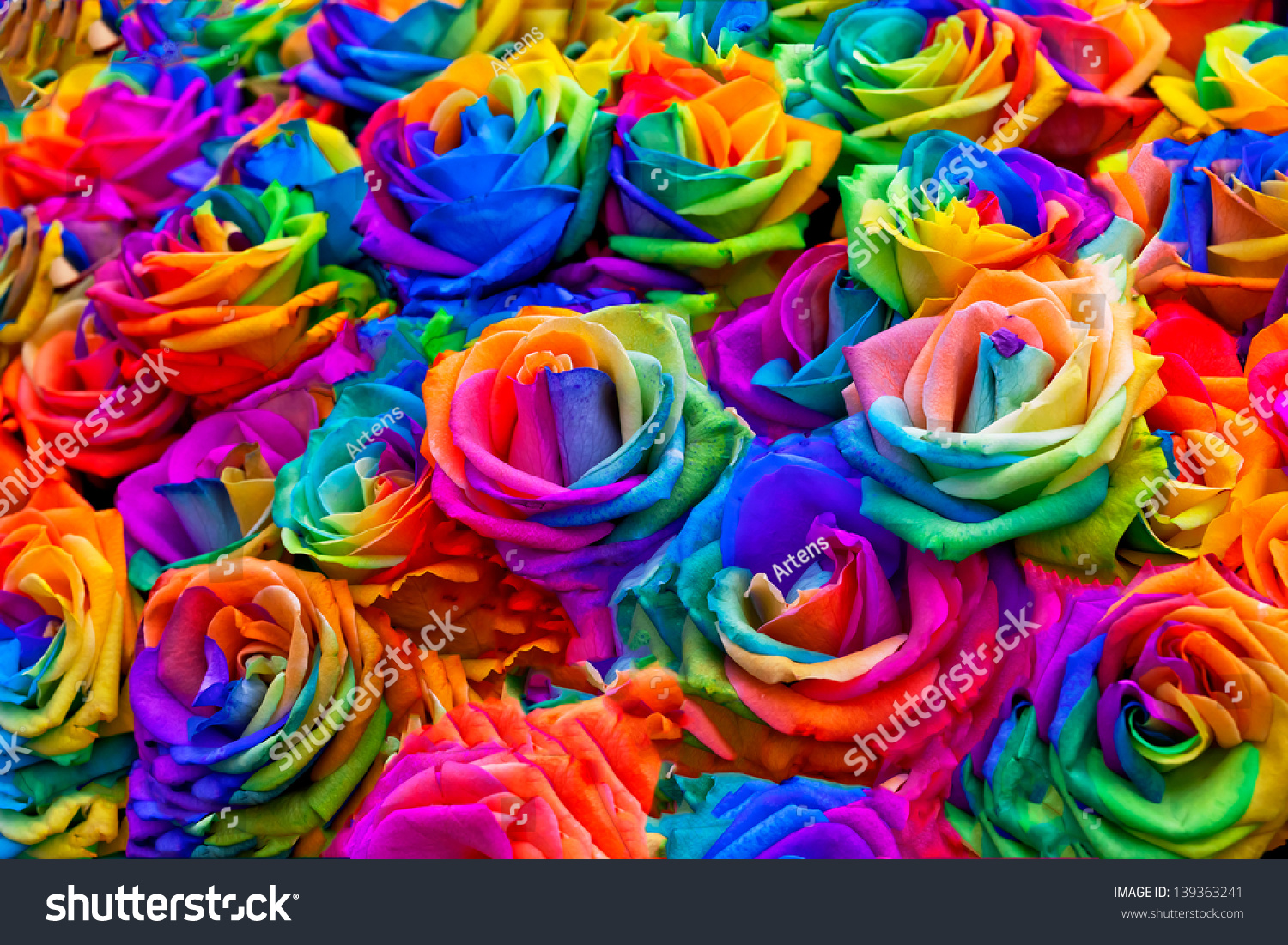 Bouquet rainbow roses floral pattern stock photo 139363241 for How to make a multicolored rose