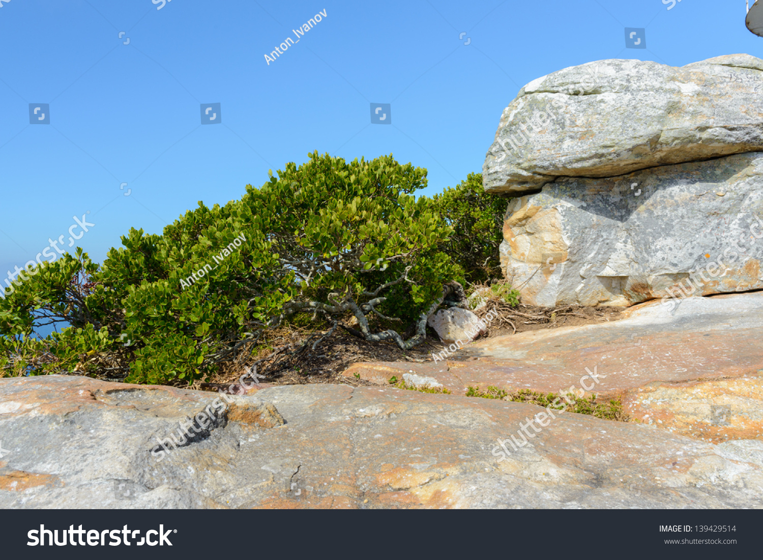 Rock In South Africa Stock Photo 139429514 : Shutterstock