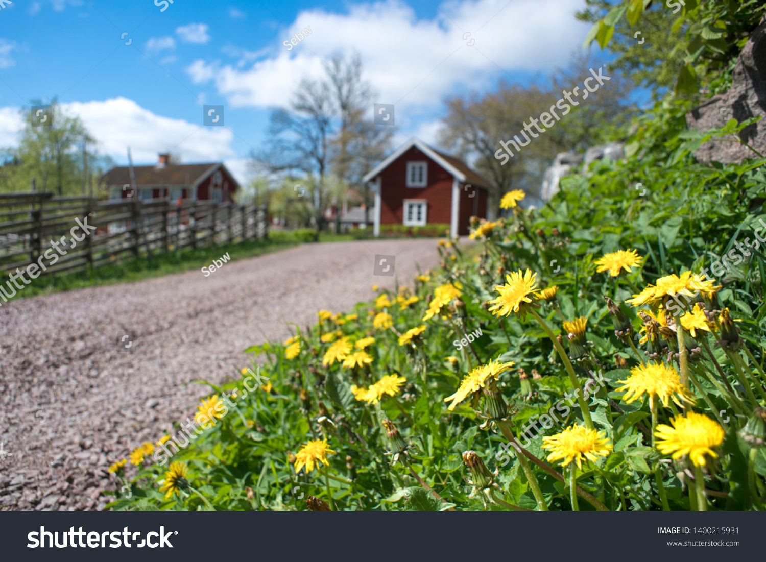 Countryside summer idyll with Green grass Yellow dandelion flowers beside road and wooden fence leading to small idyllic Swedish village Åsens by Småland. #1400215931