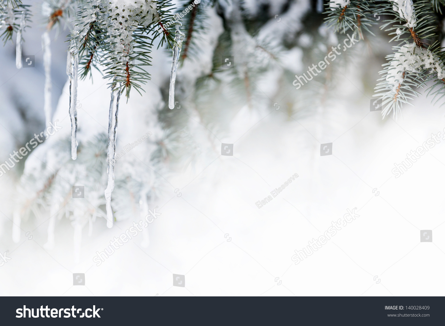 Christmas Winter Background Icicles Hanging Spruce Stock Photo (Edit ...