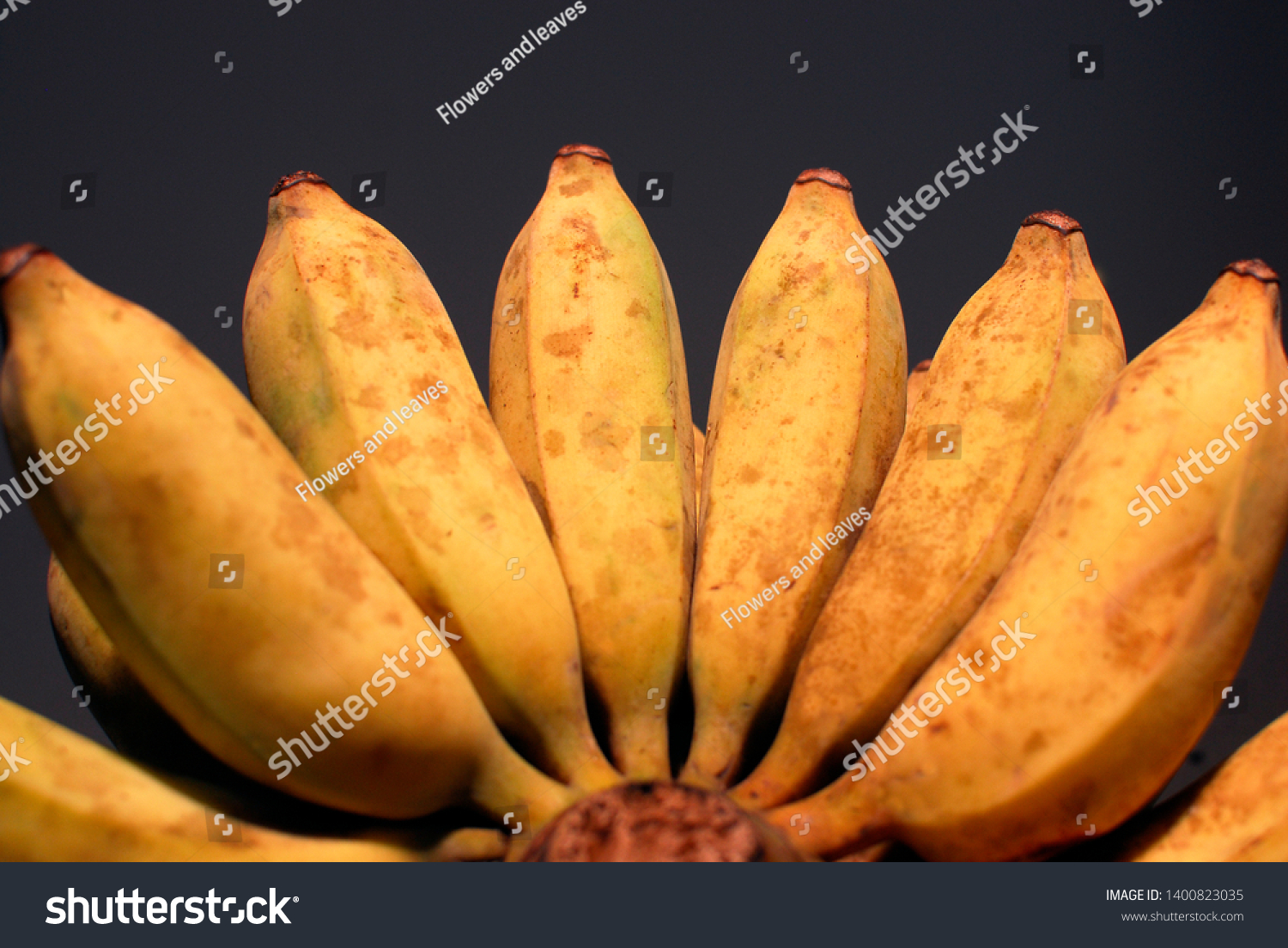 Ripe bananas are big and sweet fruits #1400823035