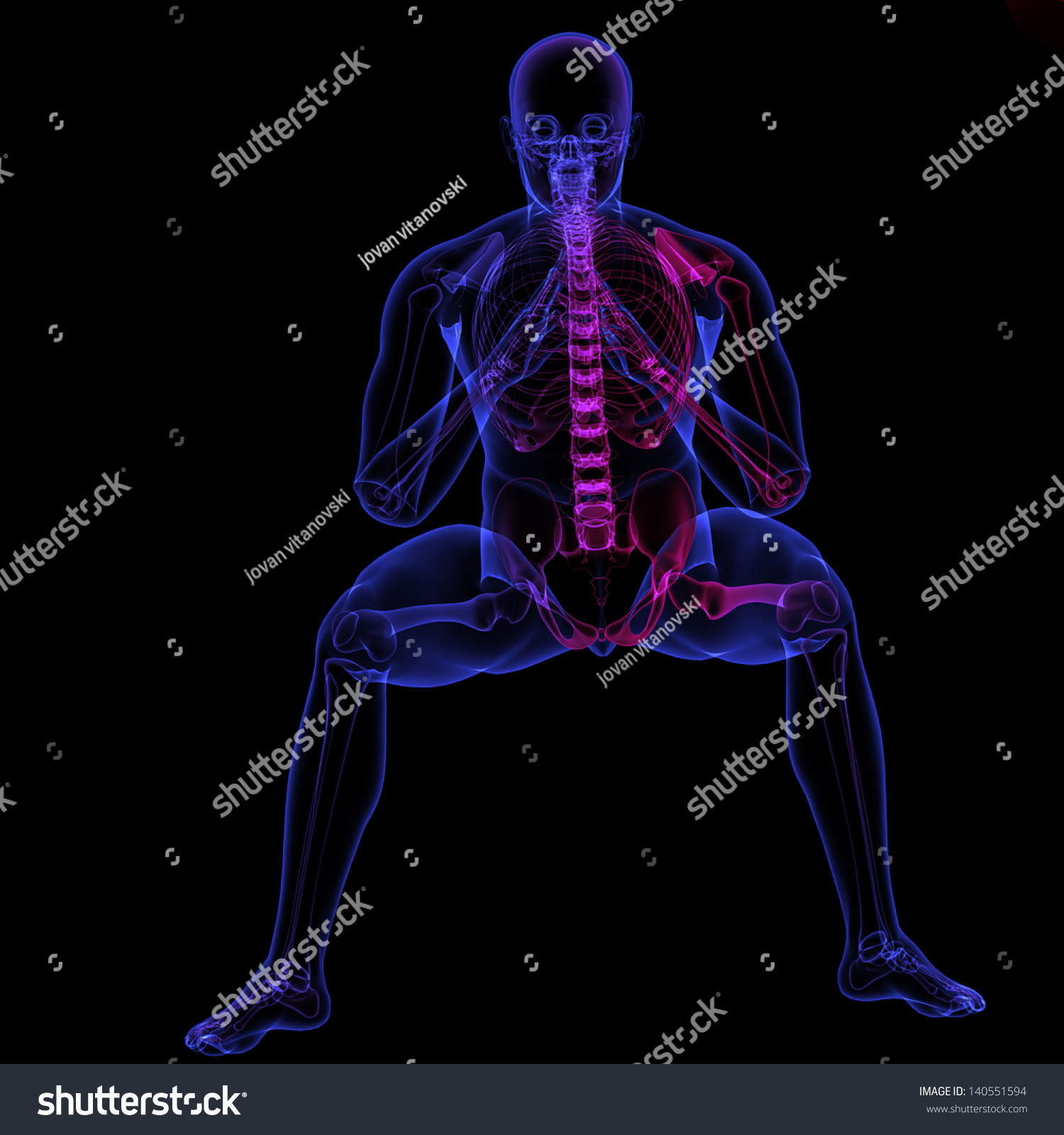 Royalty Free Stock Illustration Of Human Body Xray Made 3 D Software