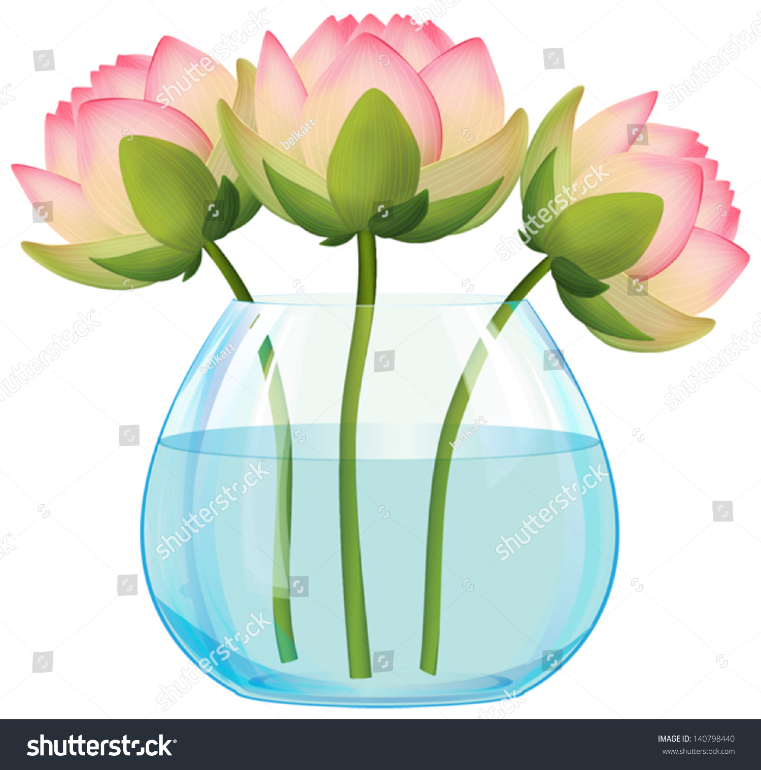 Lotus Lily Vase Isolated On White Stock Vector Royalty Free