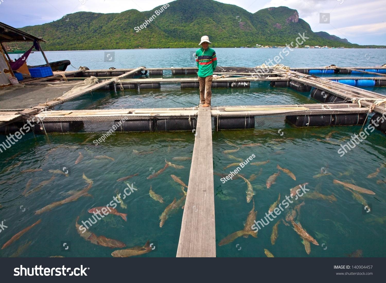 Con dao vietnam june 26 a vietnamese fish farmer for Fish in vietnam