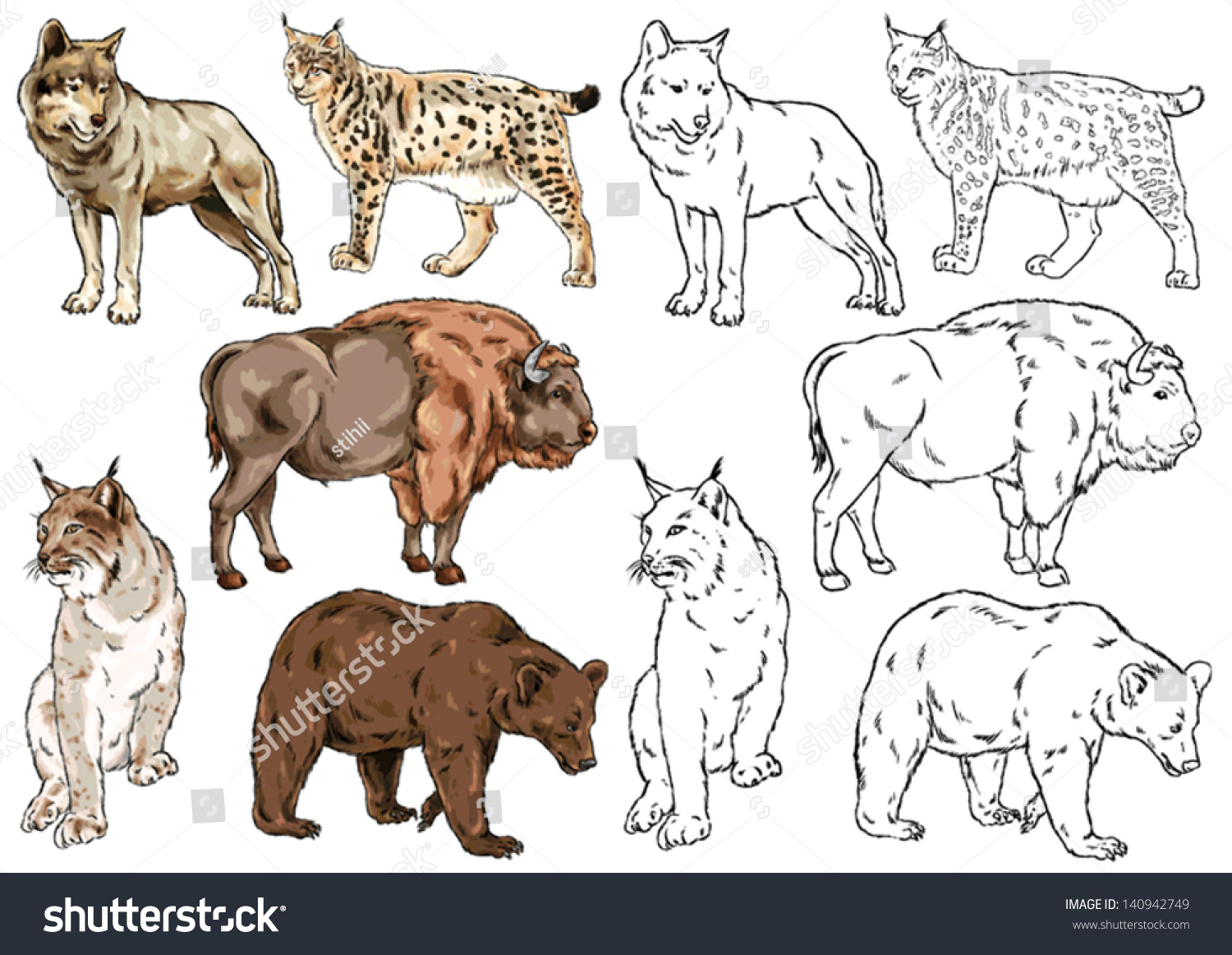 Uncategorized Wild Animal Drawing drawing contour wild animal species living stock vector 140942749 and of in the forest prey animals large