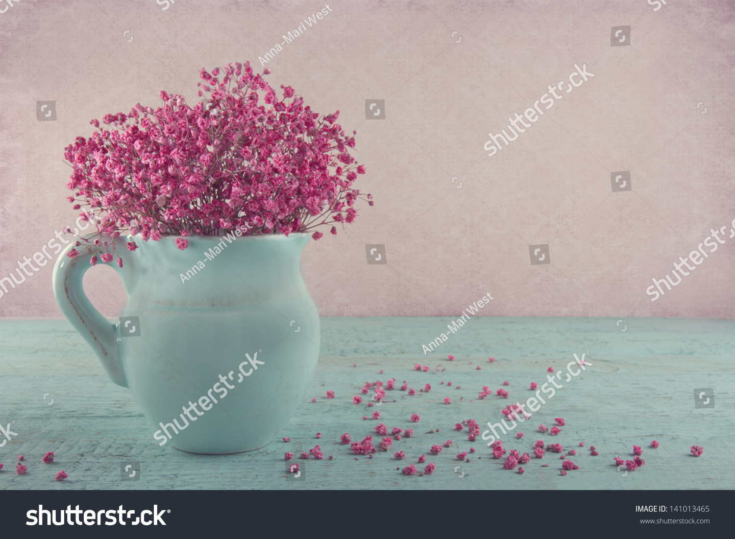 Pink Dried Babys Breath Flowers Blue Stock Photo Edit Now 141013465