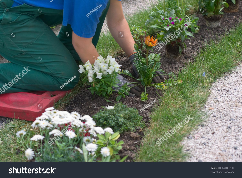 Landscape Gardener: How To Become A Landscape Gardener