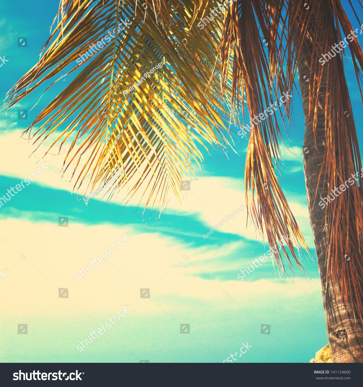 Retro Beach Stock Photo 141124600