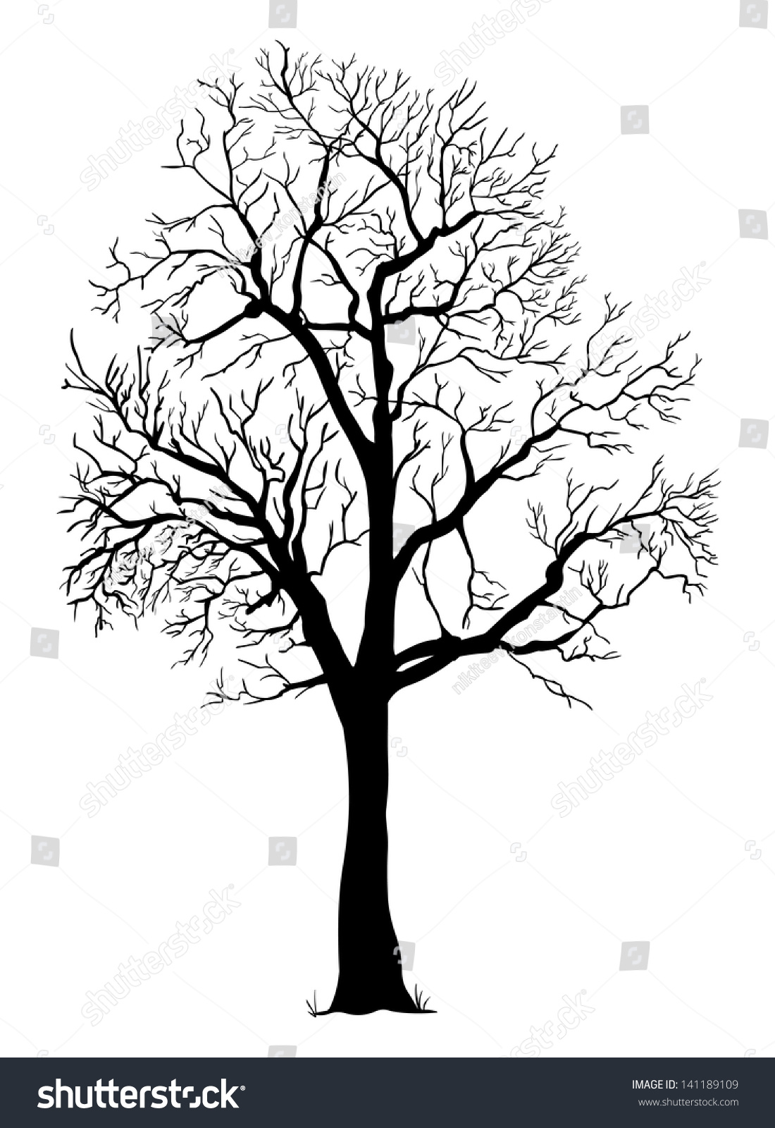 Gallery For gt Leafless Tree Silhouette