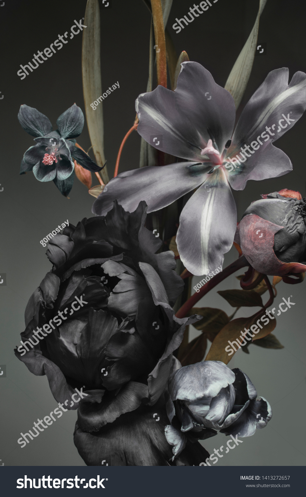 Peonies Tulips On Dark Background Bouquet Stock Photo Edit Now