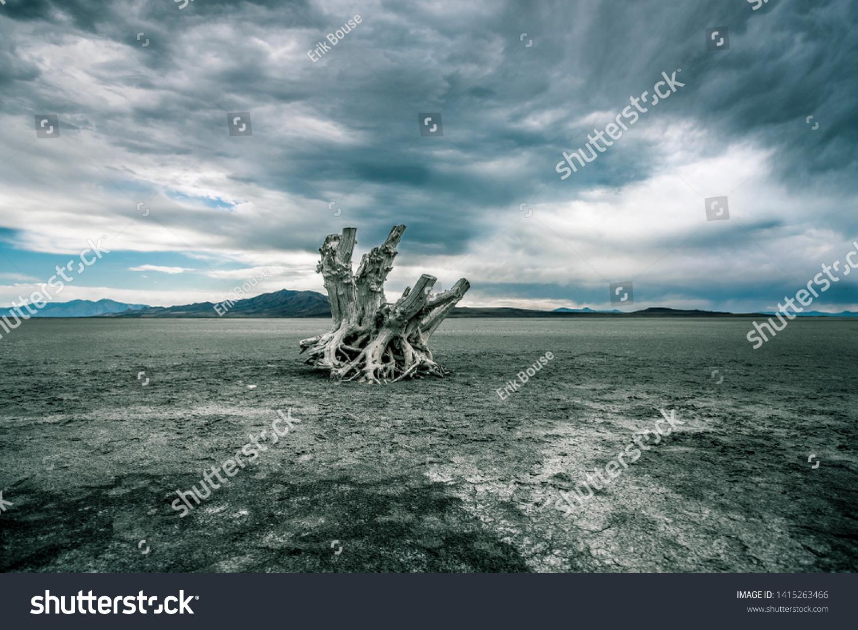 Antelope Island Salt Lake Bed Stock Photo Edit Now 1415263466