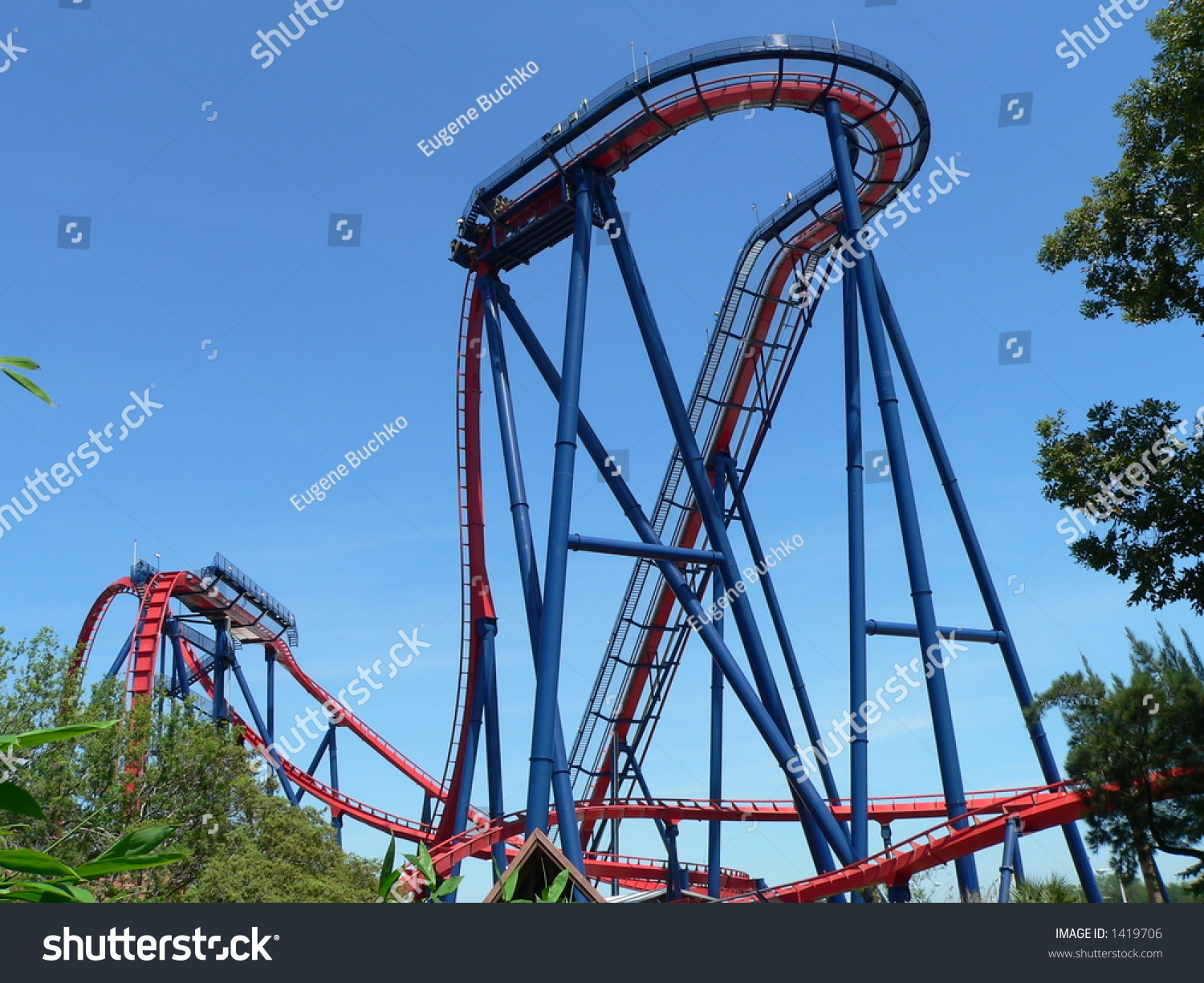 Sheikra roller coaster busch gardens tampa stock photo - Roller coasters at busch gardens ...