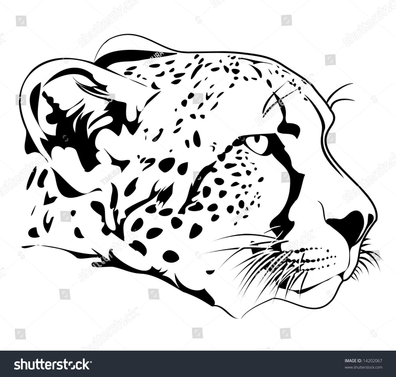 Chester Cheetah Illustrations On Behance: Cheetah Stock Vector Illustration 14202067 : Shutterstock