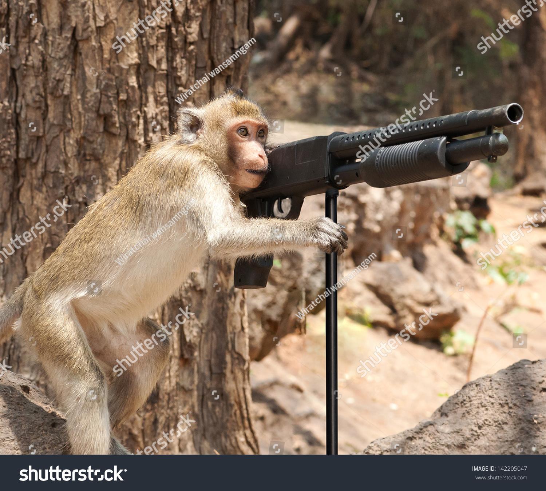 Monkey Gun Stock Photo Edit Now 142205047 Shutterstock