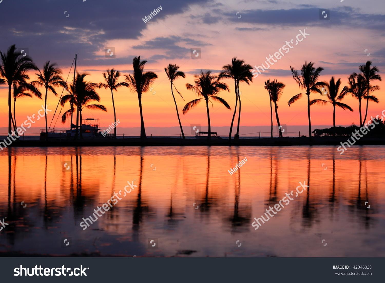 Tropical Island Beach Ocean Sunset: Paradise Beach Sunset Sunrise Tropical Palm Stock Photo
