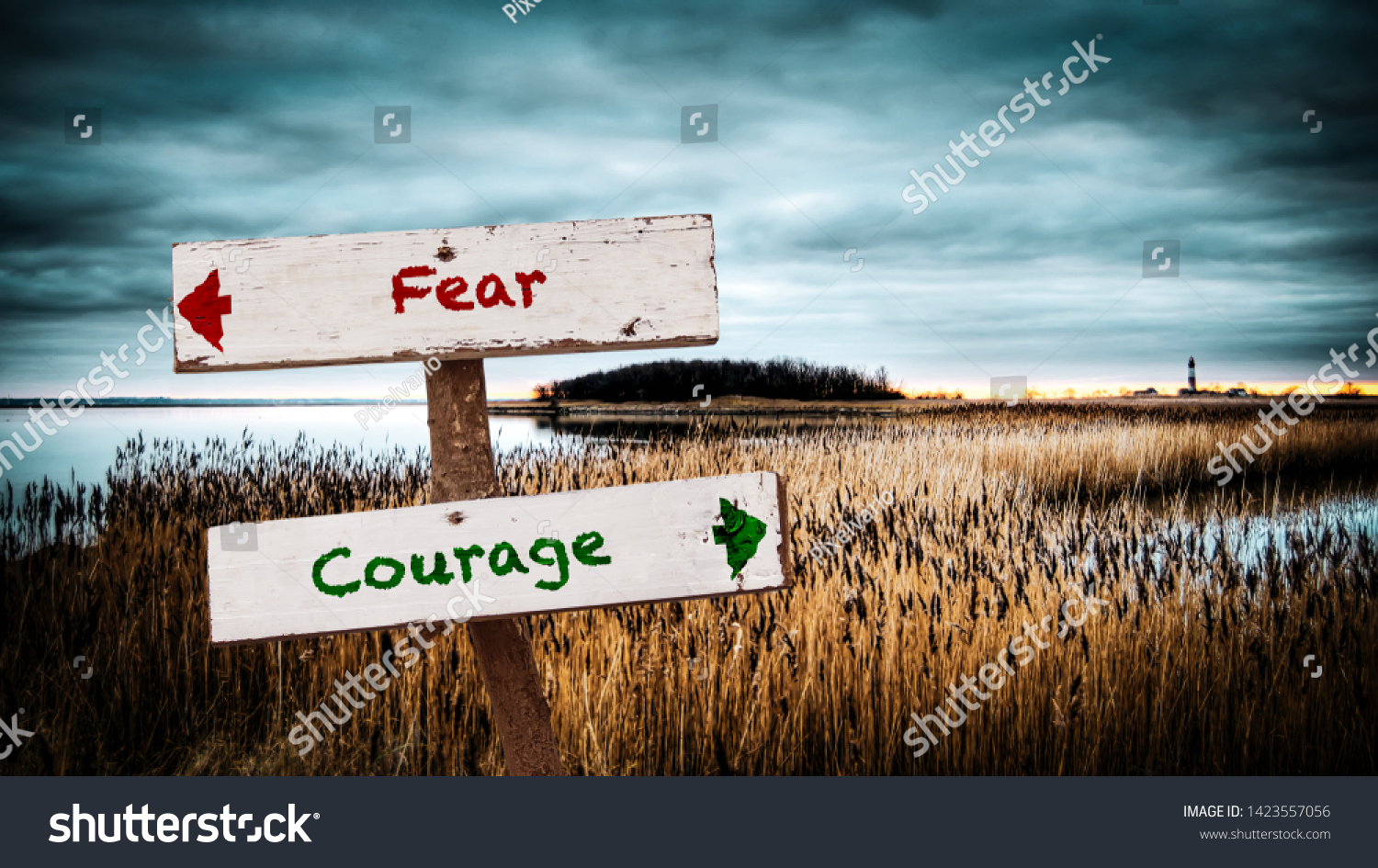 Street Sign the Direction Way to Courage versus Fear #1423557056
