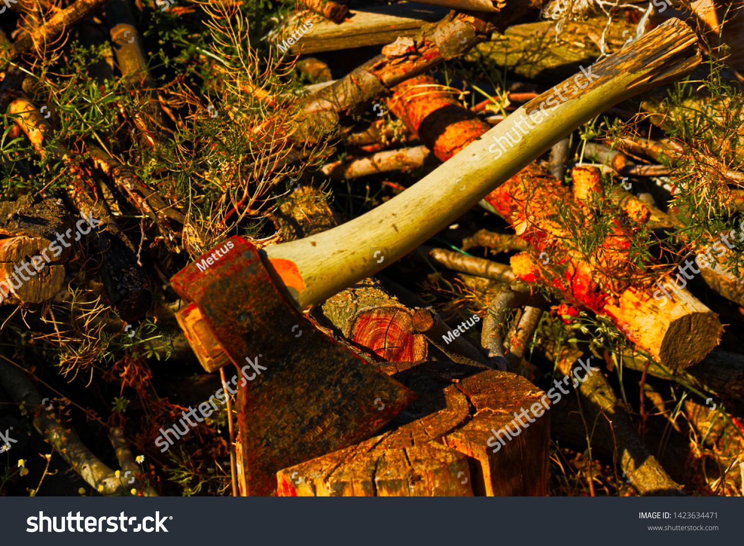 stock-photo-the-axe-stuck-in-the-choppin