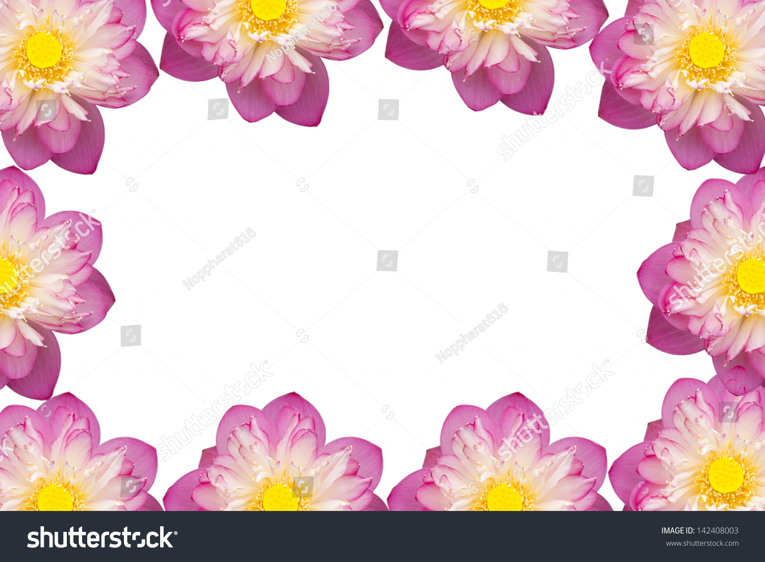 Pink Beautiful Lotus Flower Buddhist Religious Stock Photo Edit Now