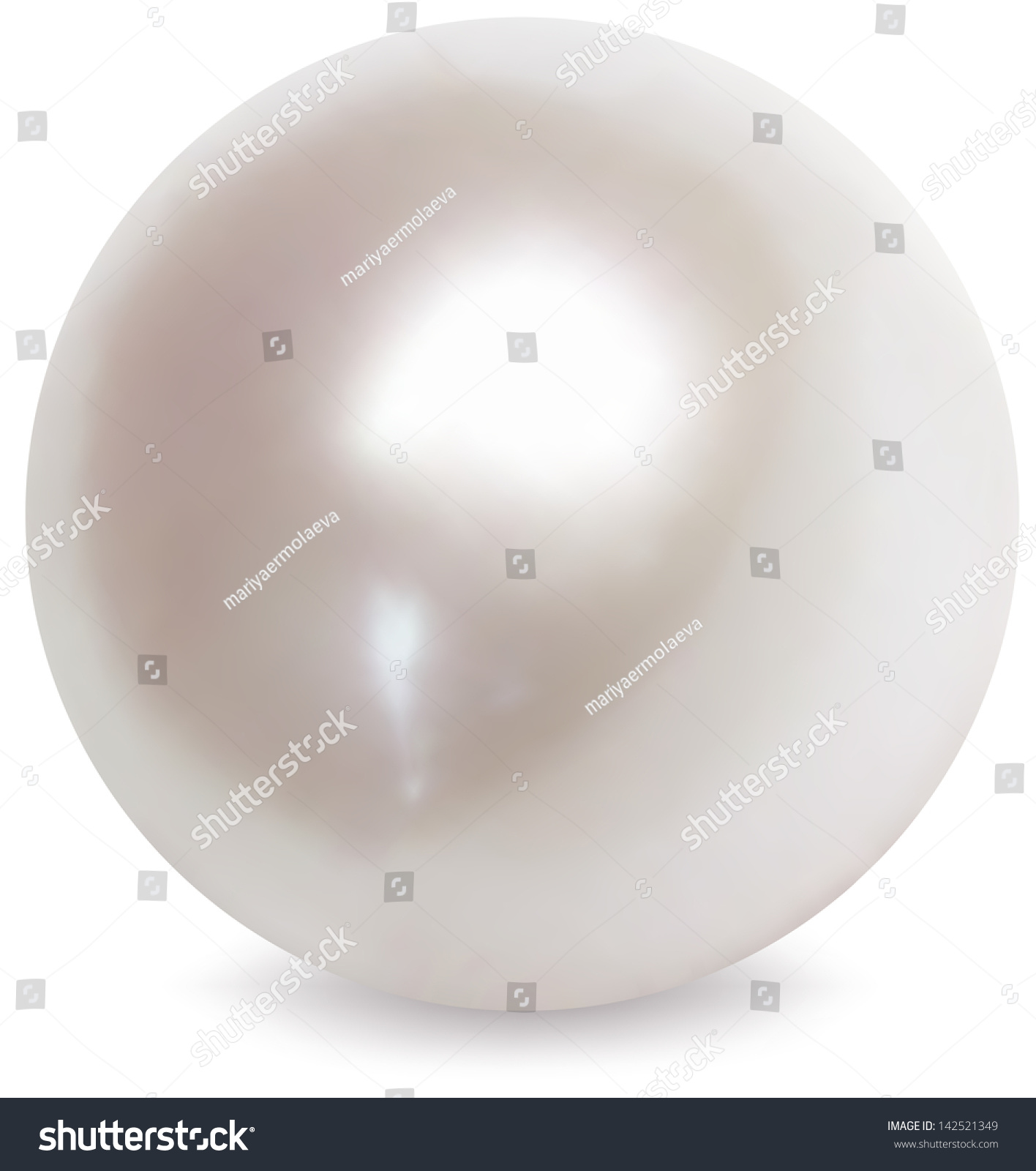 White pearl vector illustration stock vector 142521349 for White pearl