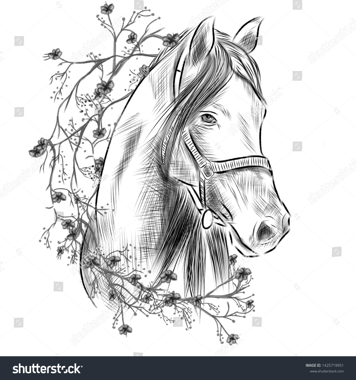 Black White Pencil Sketch Horse Flowers Stock Illustration 1425719951