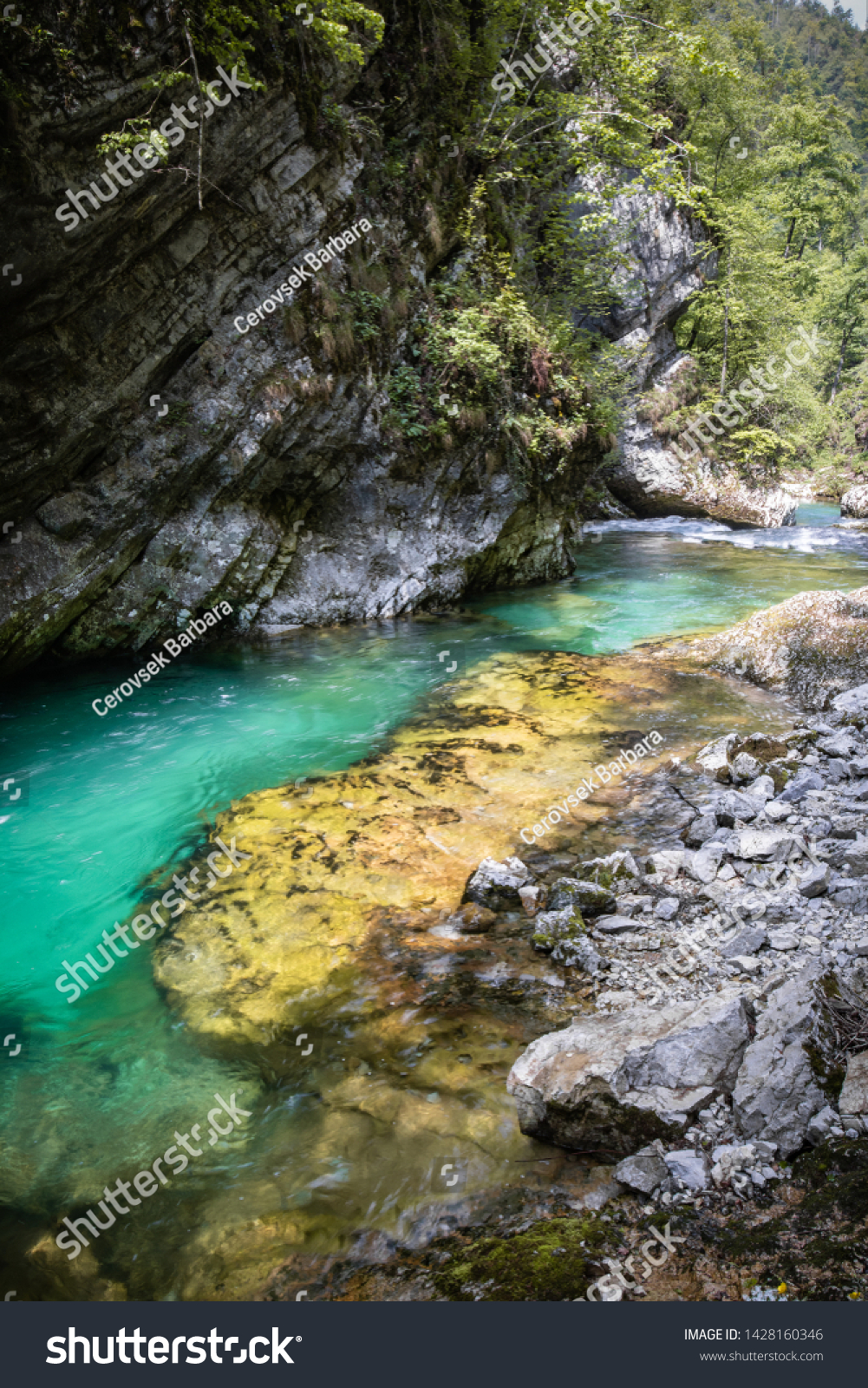 hiking in scenic valley of vintgar gorge in slovenia #1428160346
