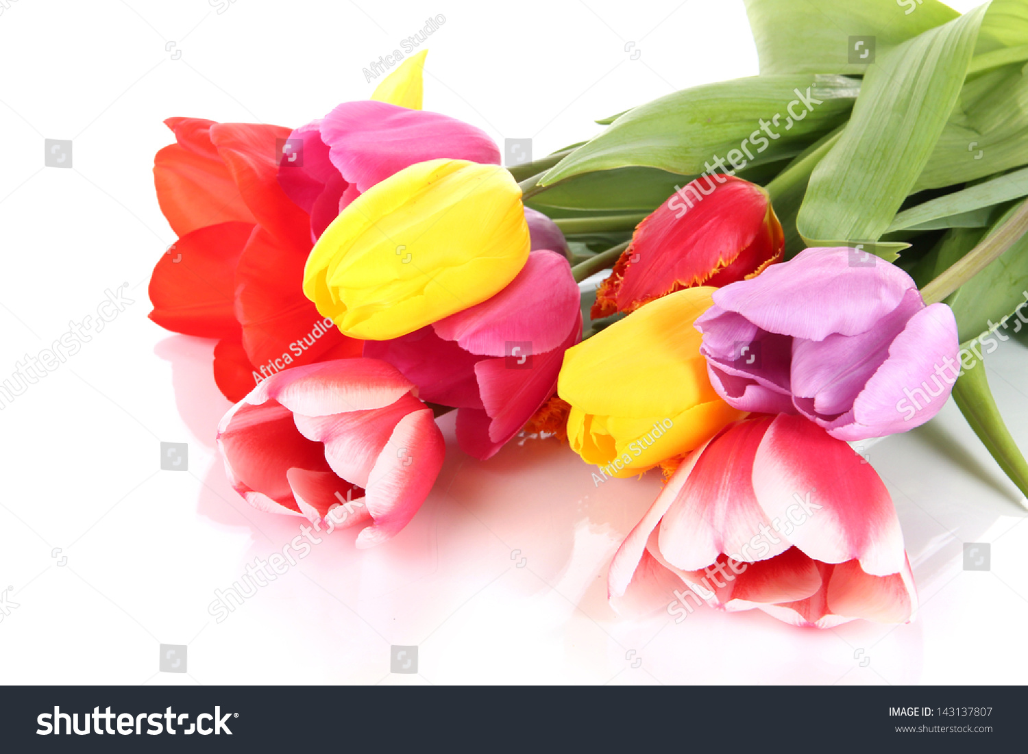 Beautiful tulips in bouquet isolated on white ez canvas id 143137807 izmirmasajfo