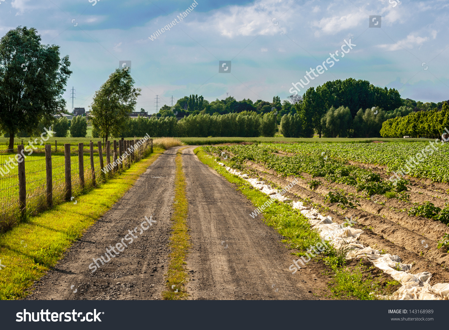 earth road fields countryside - photo #17