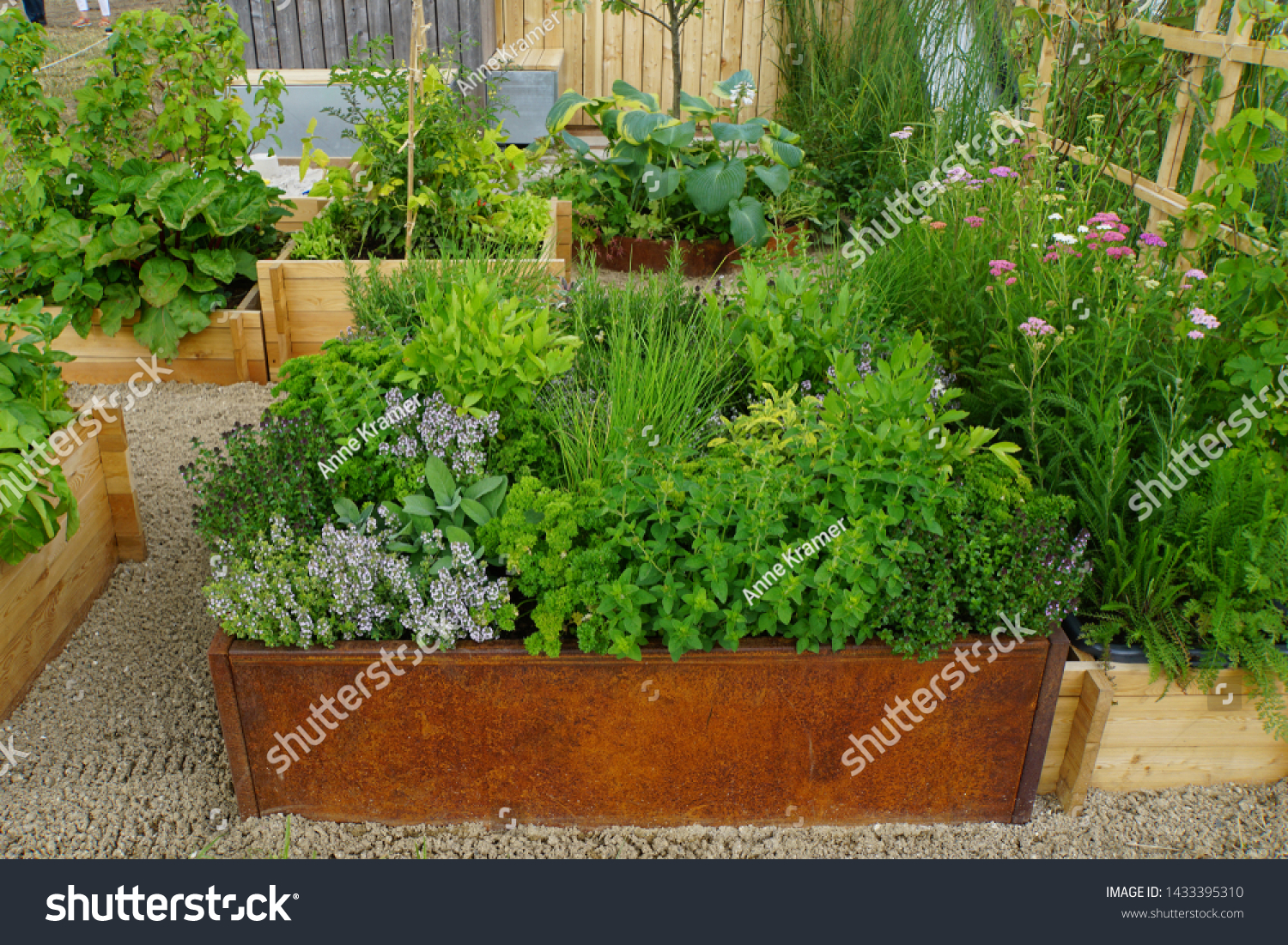 Herb Garden Raised Bed Stock Photo Edit Now 1433395310