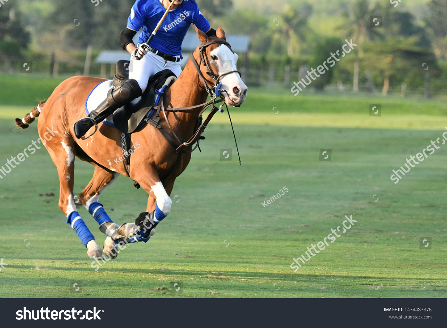 One Polo Horse Player Ridingaction Horse Stock Photo Edit Now 1434487376