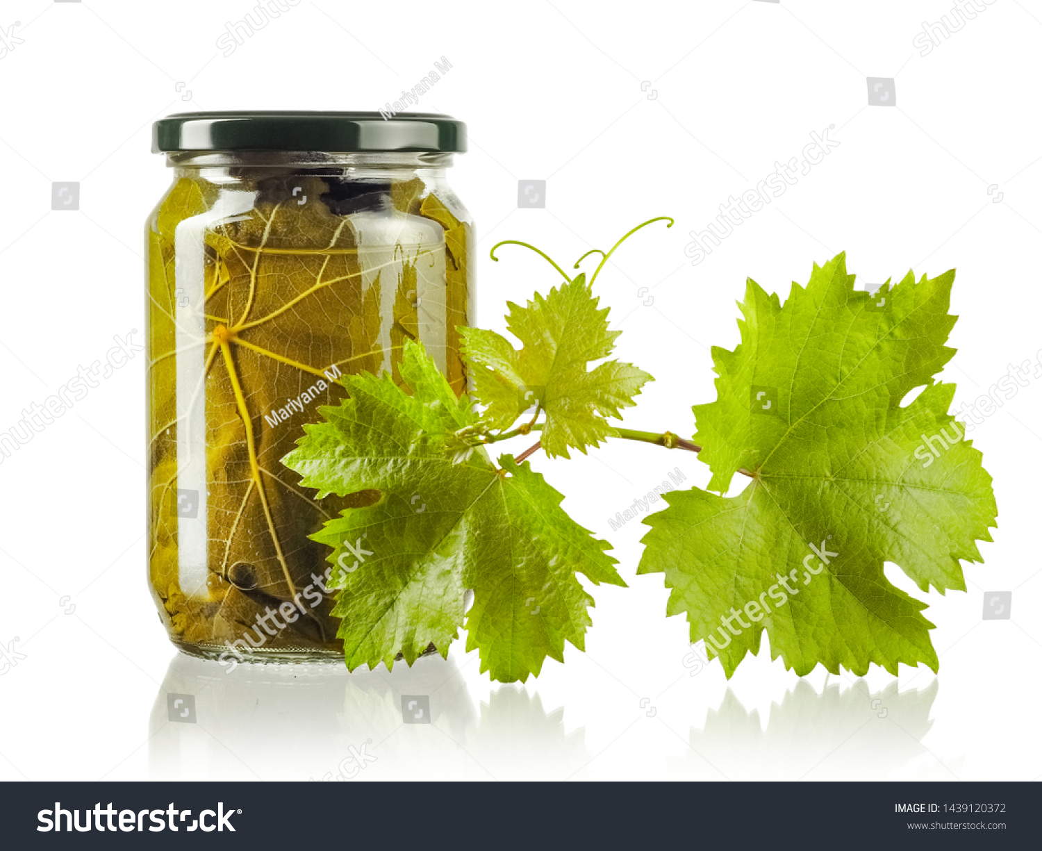 Vine Leafs Jar Fresh Grape Leaves Stock Photo Edit Now 1439120372