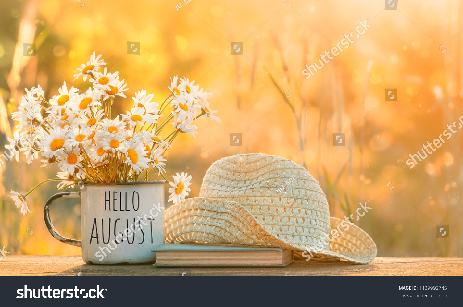 hello August. chamomile flowers in Cup, old book, braided hat in garden. Rural landscape with Chamomile in sunlight. Summertime season. copy space #1439992745