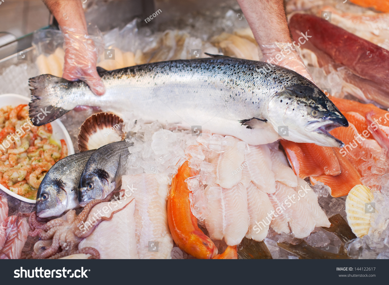 Closeup male workers hands keeping fish stock photo for Keeping fish