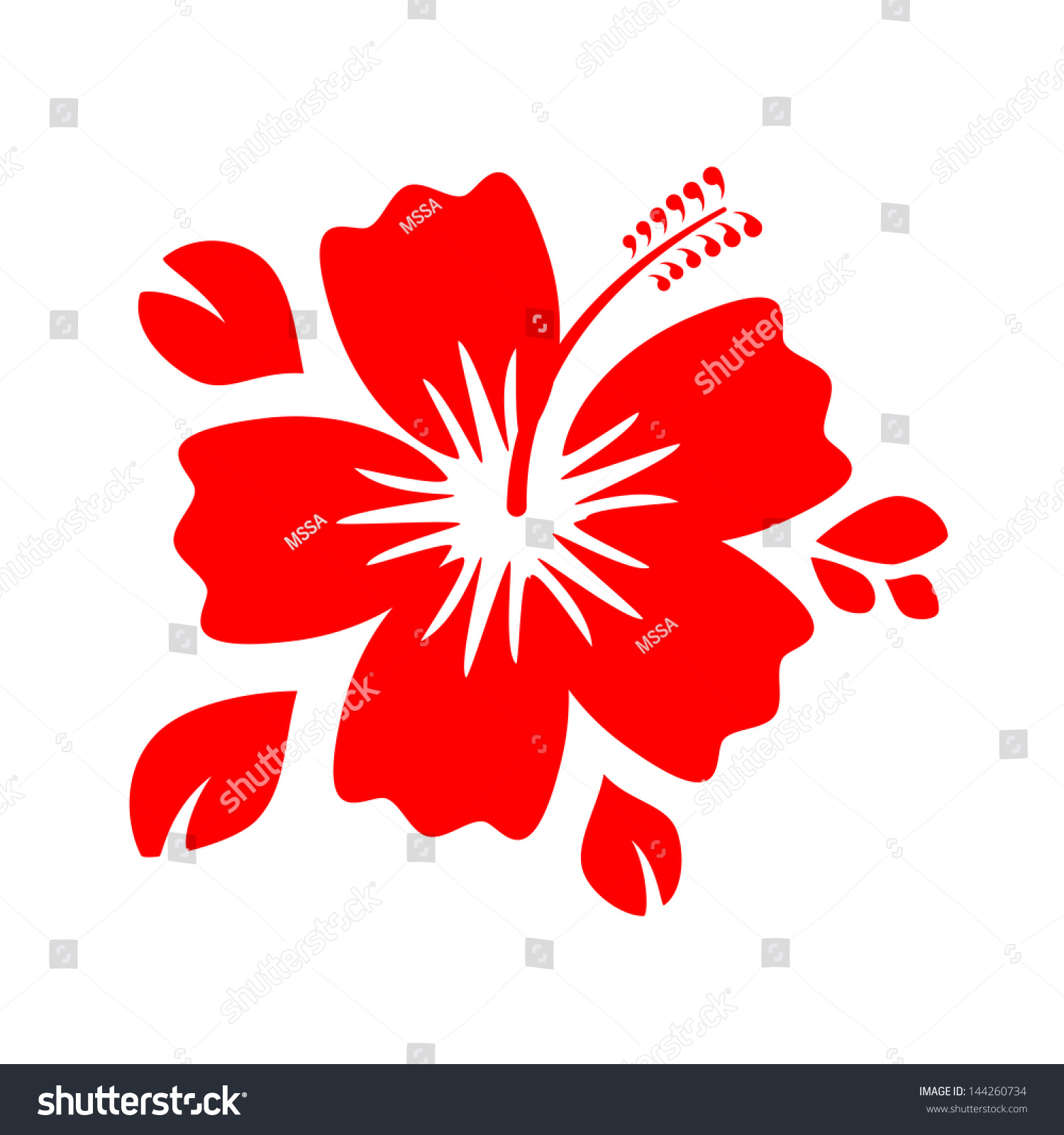 Outline Red Hibiscus Flower Isolated On Stock Illustration Royalty