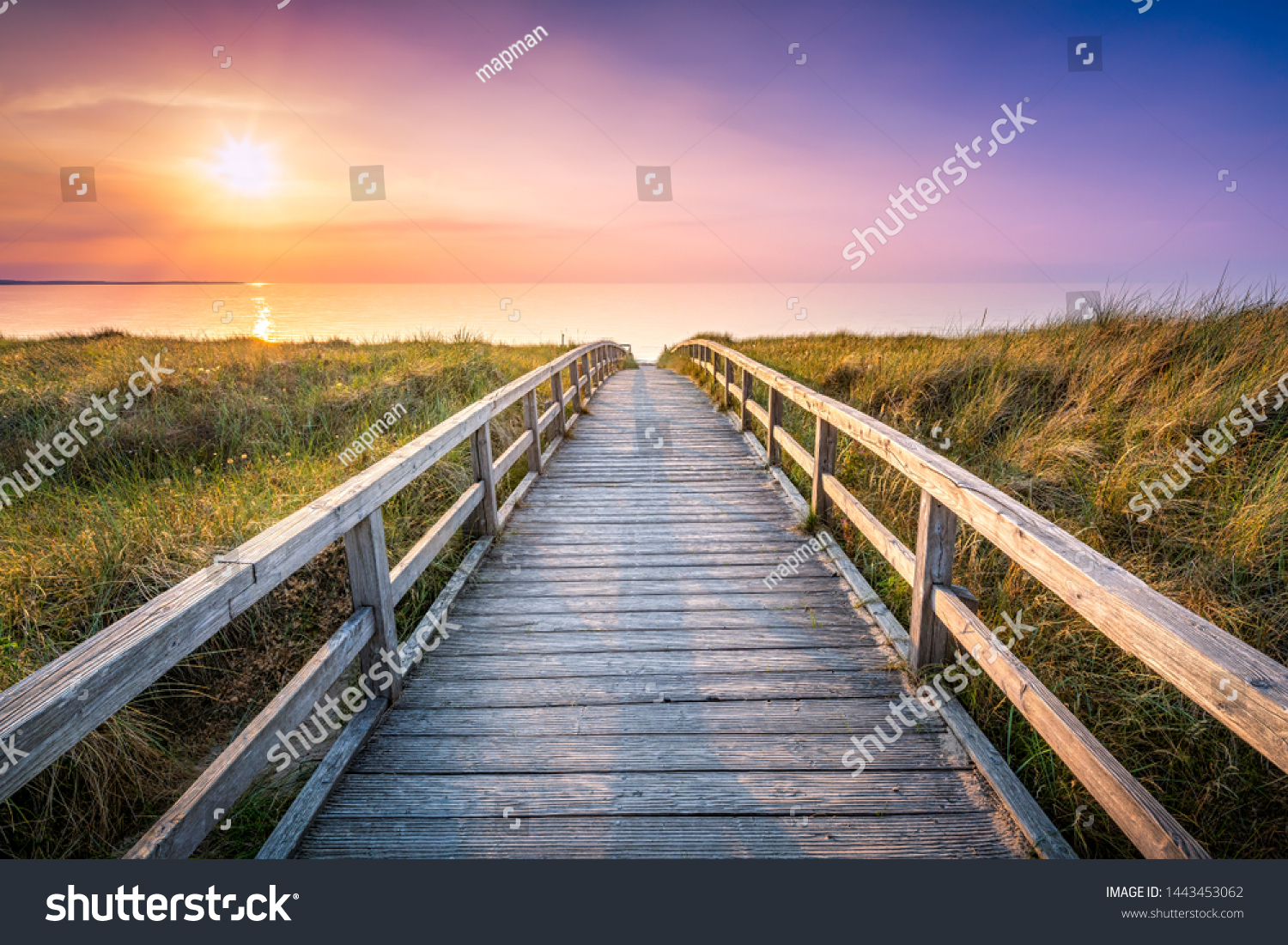 Wooden pier at sunset along the dune beach, North Sea, Germany #1443453062